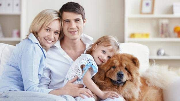 Wills & Trusts dog-young-family Direct Wills Dartmouth